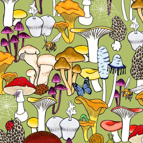 My Favorite Fungi -Olive Background