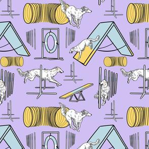 Simple light Silken Windhound agility dogs - purple
