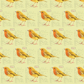 Yellow_Bird_and_A_Route_of_Evanescence_by_Emily_Dickinson_5inch