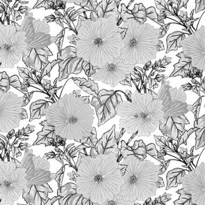 Marshmallow ~ Black and White