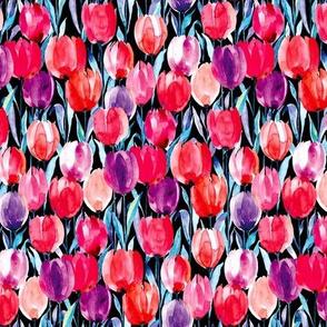 tulips Black S
