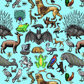 Medieval Animals - Aqua
