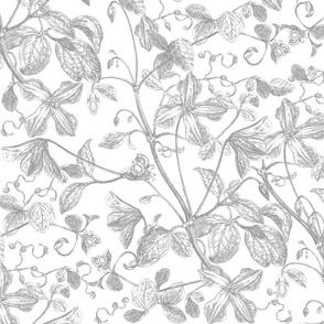 Eucalyptus  Floral  Etching WHITE
