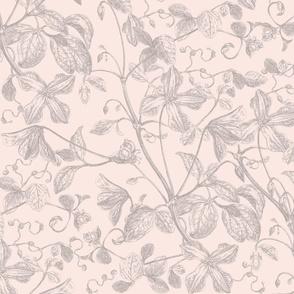 Eucalyptus Floral Etching BLUSH