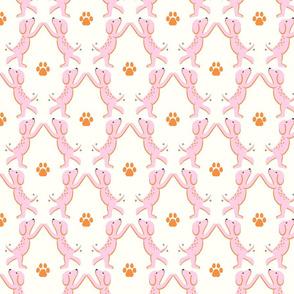 high five dogs/orange pink/medium