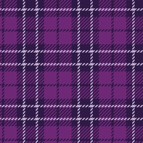 Small Purple Plaid