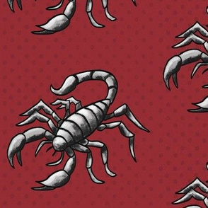 Scorpion on red – large