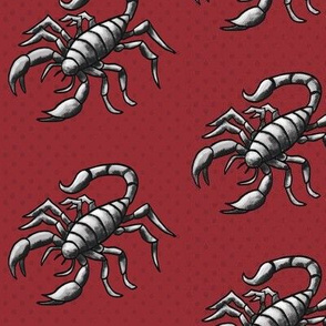 Scorpion on red – medium