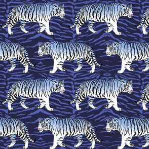 White Tigers On Blue
