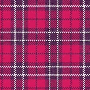 Small Pink Purple Plaid