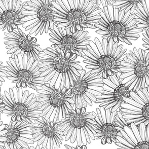 Daisy Bed Black and White