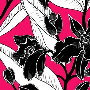 black and white fuscia orchid 2020