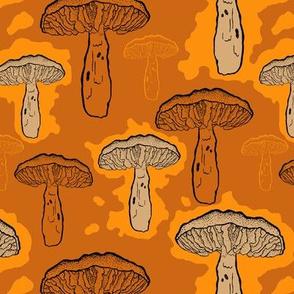 Wild Autumn Mushrooms