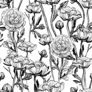 Vintage sketch roses black and white pattern