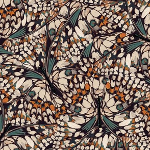 Ellewood Butterflies { small }