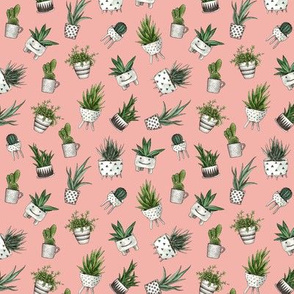 cute house plants on a coral background