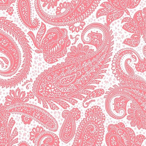 small Paisley Positivity red pink white