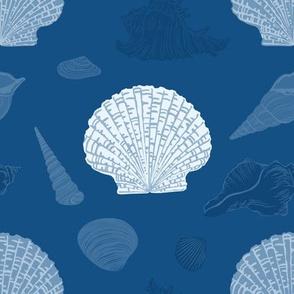 Seashells in classic blue