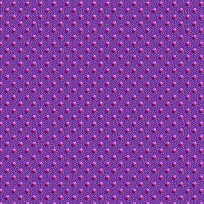 Petite purple dots triple berries