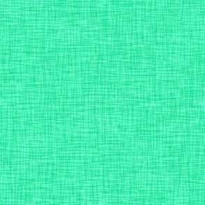 Rainy Day Scritch-Scratch Plaid Textured in Pastel Green