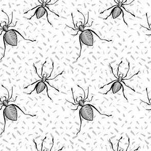 Spider Insect on White.Haloween seamless vector pattern