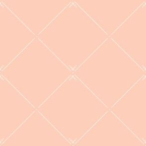 Lovely Trellis: Blushing Peach & White Latticework