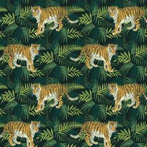 Amur tiger small