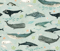 Whale whispers