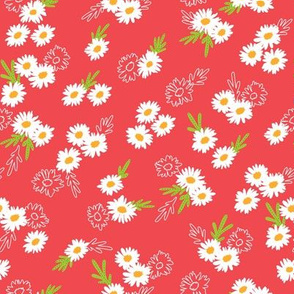 Summer daisies on red