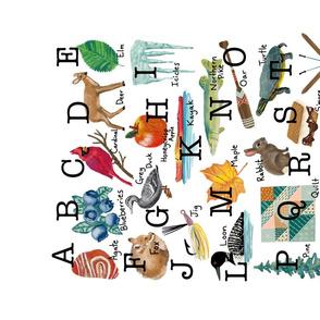 My Minnesota Alphabet