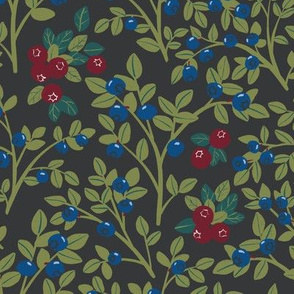 Forest berries on a dark background