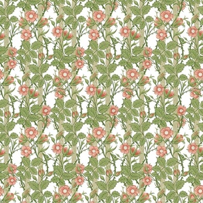 Rambler ~ The William Morris Collection ~ Tangled on White