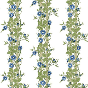 Rambler ~ The William Morris Collection ~ Blue on White
