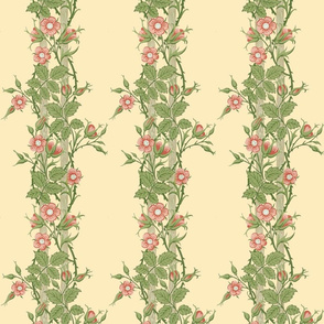 Rambler ~ The William Morris Collection ~  Trianon Cream