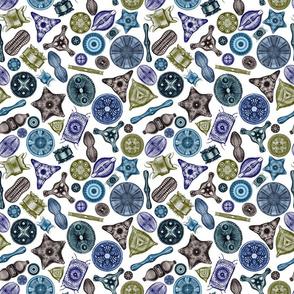 Ernst Haeckel Diatom Toss Sea Hues