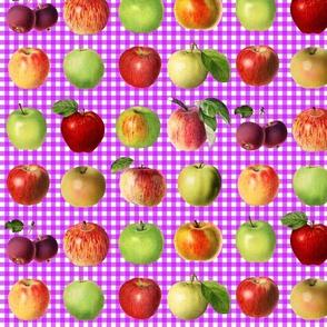 Apples on magenta gingham