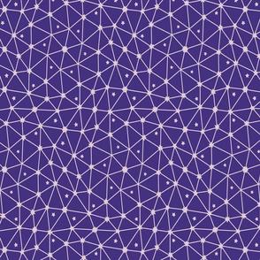 purple netting with stars with rysunki_malunki