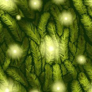 Illuminated_fir_tree