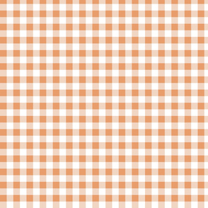 Peachy Gingham 1.14x1.14