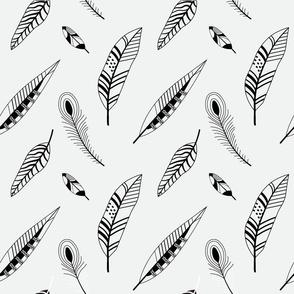Bird feathers silhouettes on white
