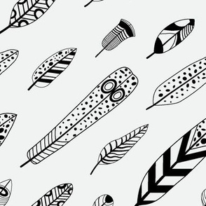Black and white birdie feathers