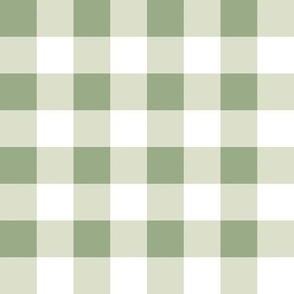 Sage and Mint Gingham 2x2