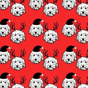 doodle dogs as Santa & Reindeer