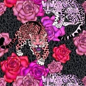 big cats and roses jungle