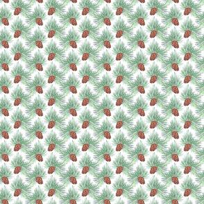 Maximal Pine