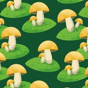 My golden mushroom garden - small