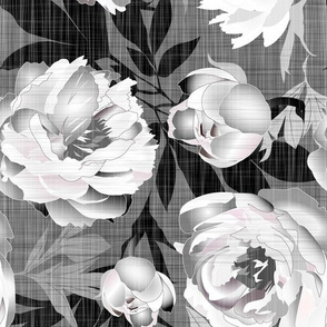 peonies white on linen texture - extra large