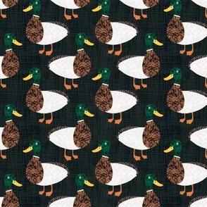 Bird Alphabet - D is for Duck