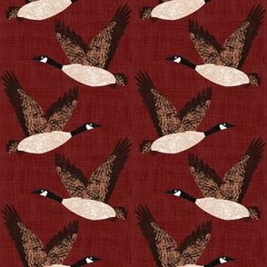 Bird Alphabet - G is for Goose