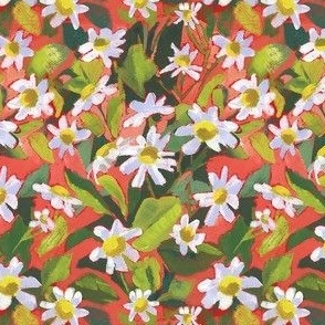 Daisies on Orange/Red, Small